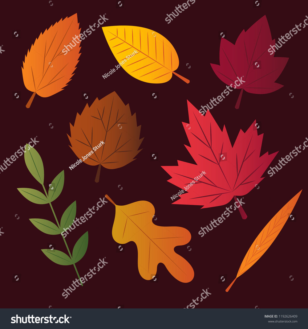 stock-vector-set-of-vector-autumn-leaves-in-various-shapes-and-colors-1192626409.jpg