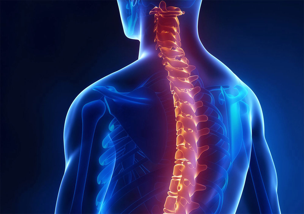 Treatments to the back, neck, and spine, such as chiropractic and physical therapy care, can sometimes last several months after a car crash.