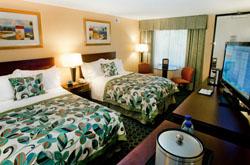 hotels-detailspage-81-6.jpg