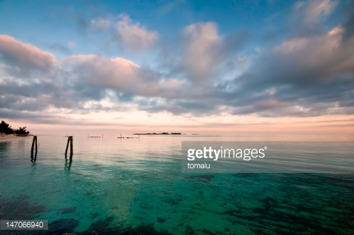 Photo by tomalu/iStock / Getty Images