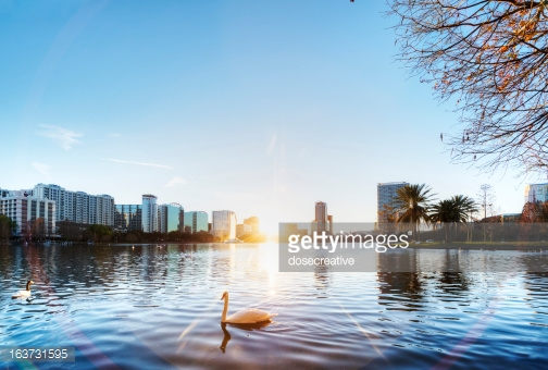 Photo by dosecreative/iStock / Getty Images