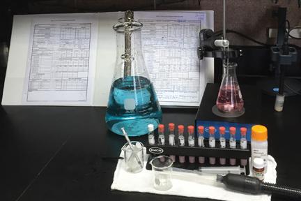 Roemer Lab