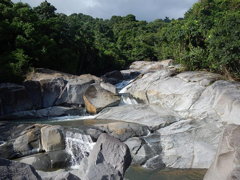 How do tropical rivers slow knickpoints in rivers?