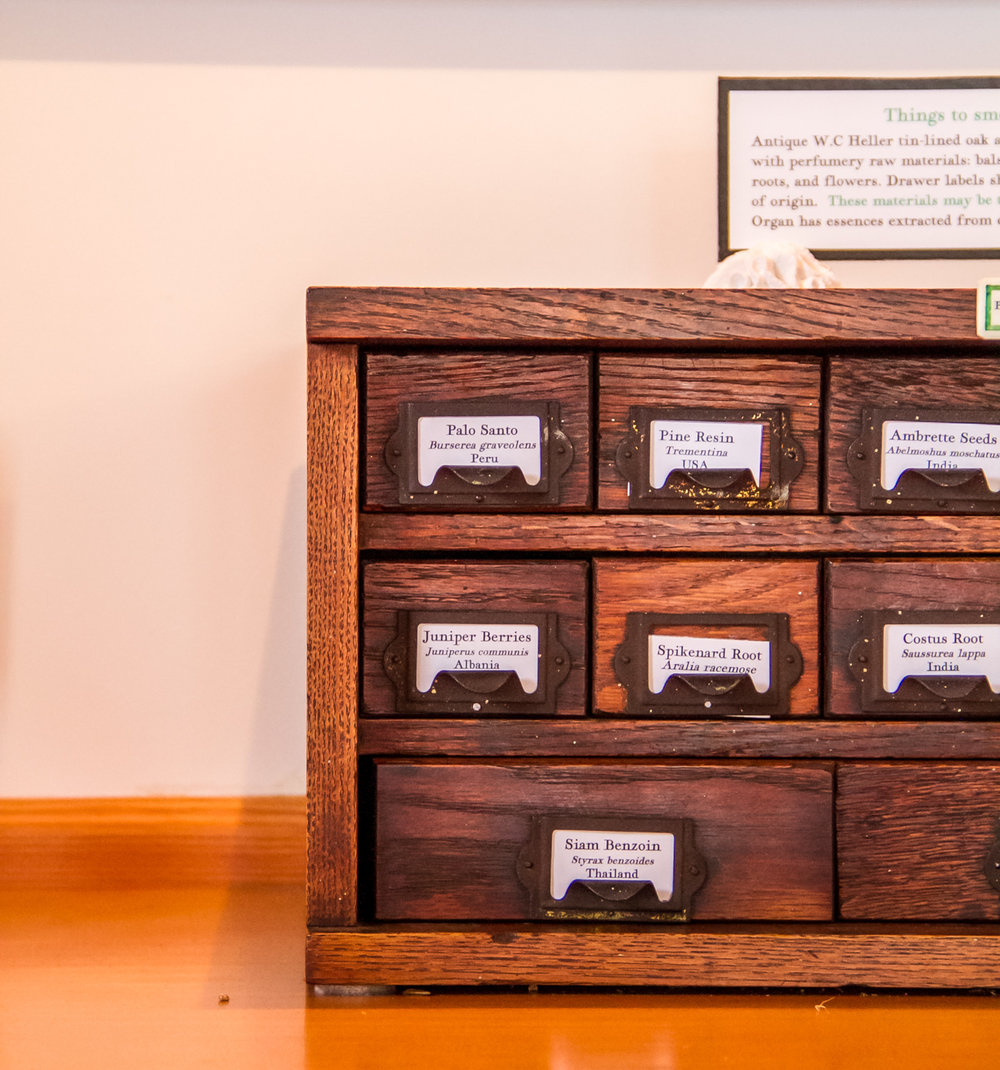 Apothecary chest at the Aftel Archive of Curious Scents