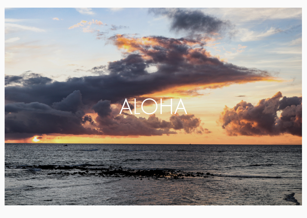 """ALOHA""  -  Kauai, December 2017     16.75"" wide x 13.5"" high  /    Price: $90.00"
