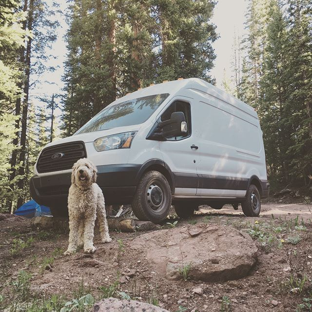 Ollie's first camping trip. Who's ready to do some exploring this summer?