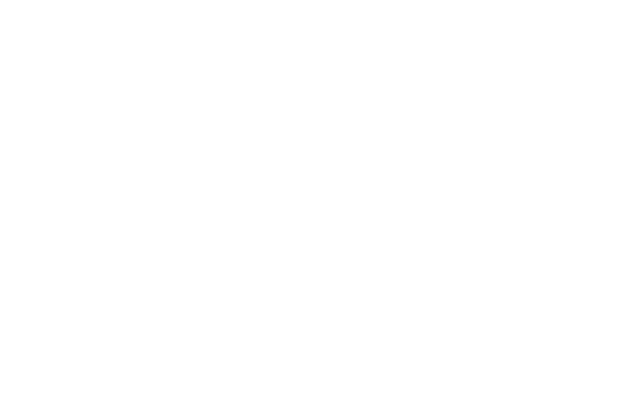 Revenue Accelerator