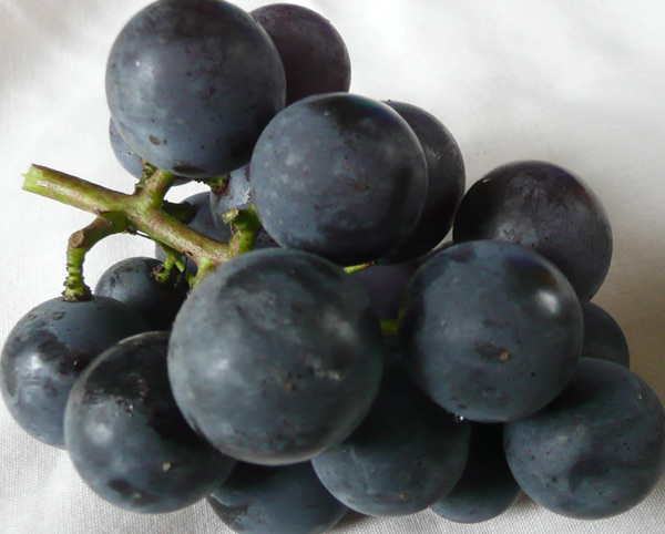 Black_Grapes1.jpg