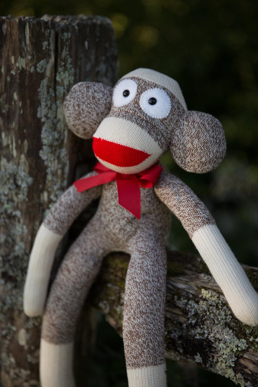 monkey (10 of 29).jpg