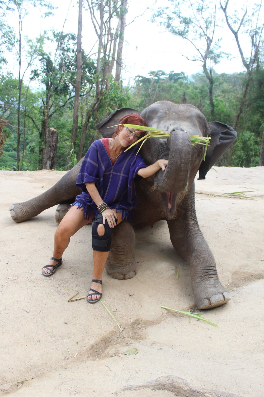 #PATARA ELEPHANT FARM#