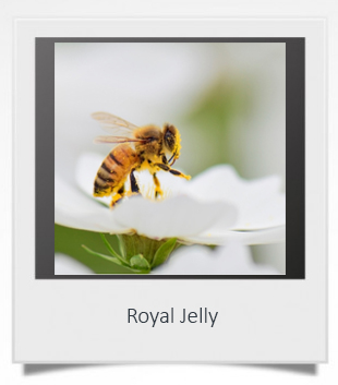 Royal Jelly 1.jpg