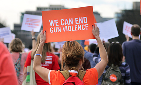 2 - Sign the petition to override Governor Rauner's veto on gun licensing in Illinois
