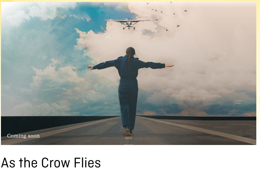 As The Crow Flies 2016 (National Film Board of Canada) feature length doc by Tess Girard - original composition by DMG and Daniela Gesundheit. Will be premiering on the Documentary Channel in 2017. -