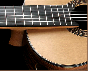 Elevated fretboard design from Kris Barnett