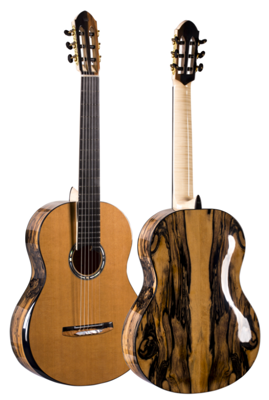 A fabulous shot of the front & back of this magnificent guitar.