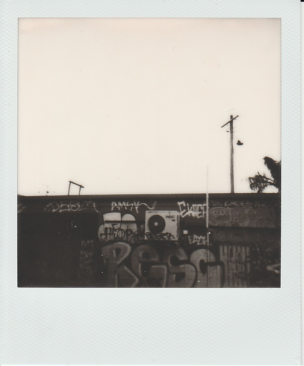 RESC / 600 Polaroid film