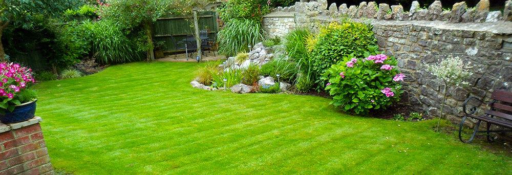 lawn-3.jpg