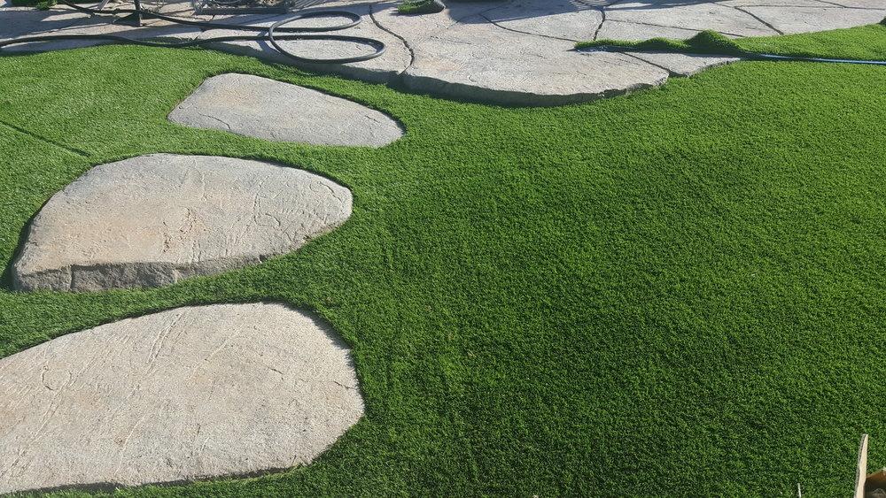Drought Tolerant Landscape Ideas For California Yards Quality Home Improvement Inc.jpg