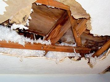 Ceiling-leak.png