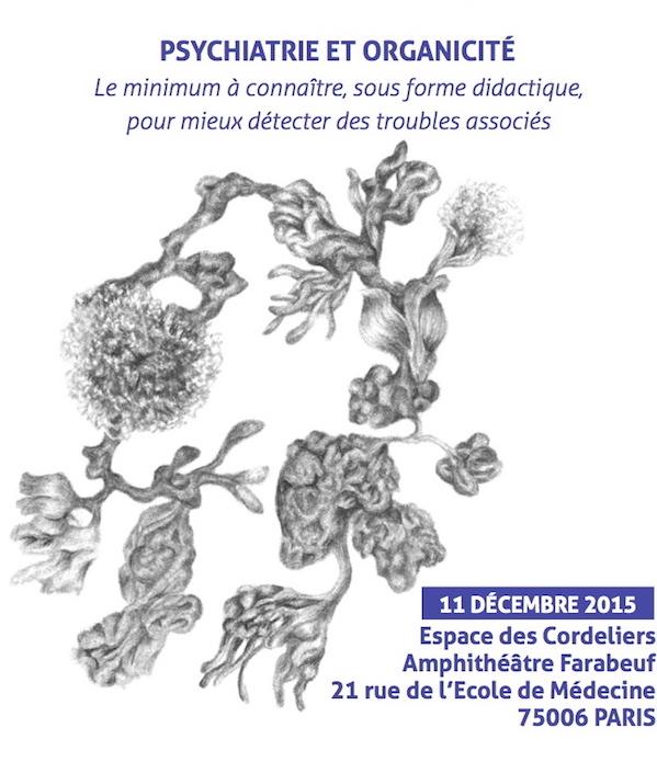 Confluences_Colloque_REMRP_Psychiatrie_Organicité_2015
