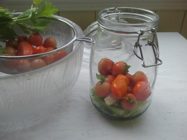 Pepperkorn, laurbærblad og litt chili legges nederst i glasset. Deretter et lag stangselleri.