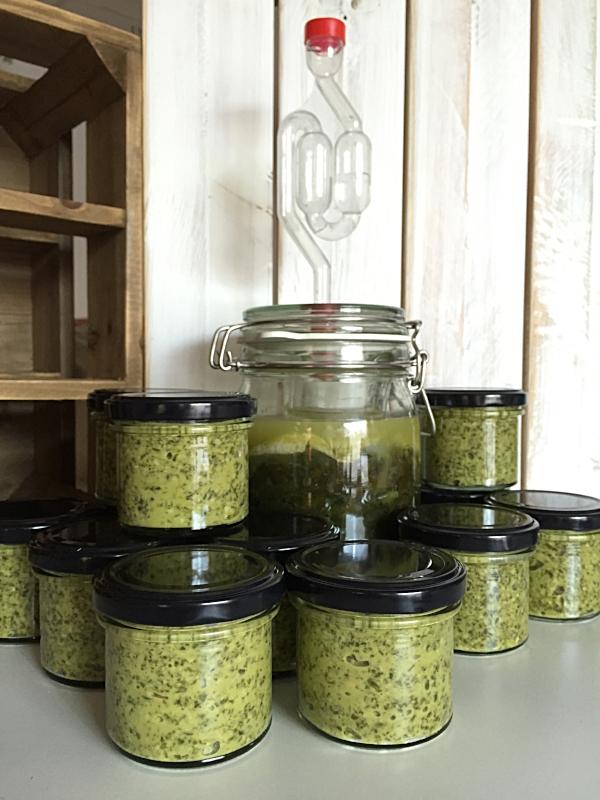 Ramsløkpesto fra Bentes fermentering :-)