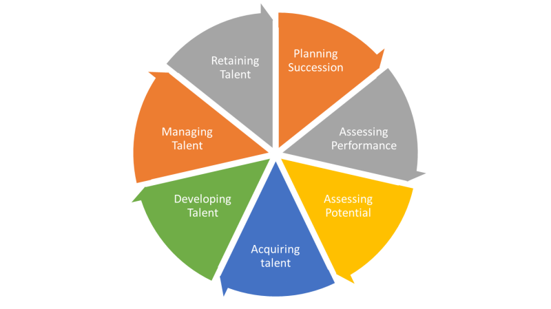 Talent Management Wheel