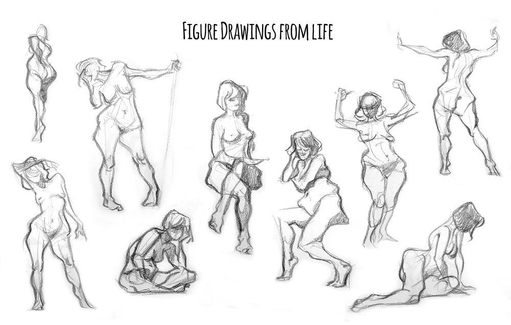fig draws.jpg
