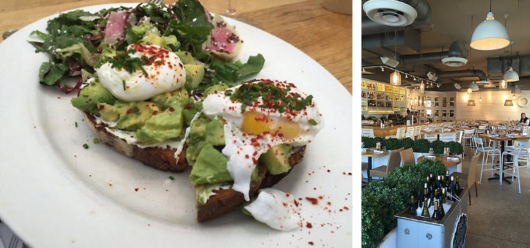 Summer House Santa Monica Interior & Avocado Toast