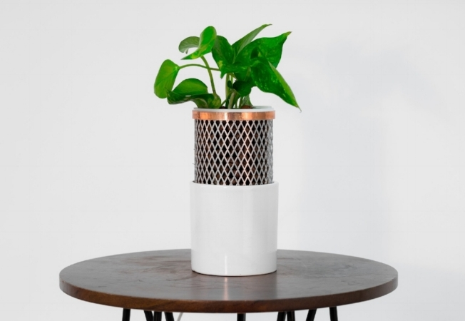 Tera, the natural purifier, planted with golden pothos. Learn more about Tera  here .
