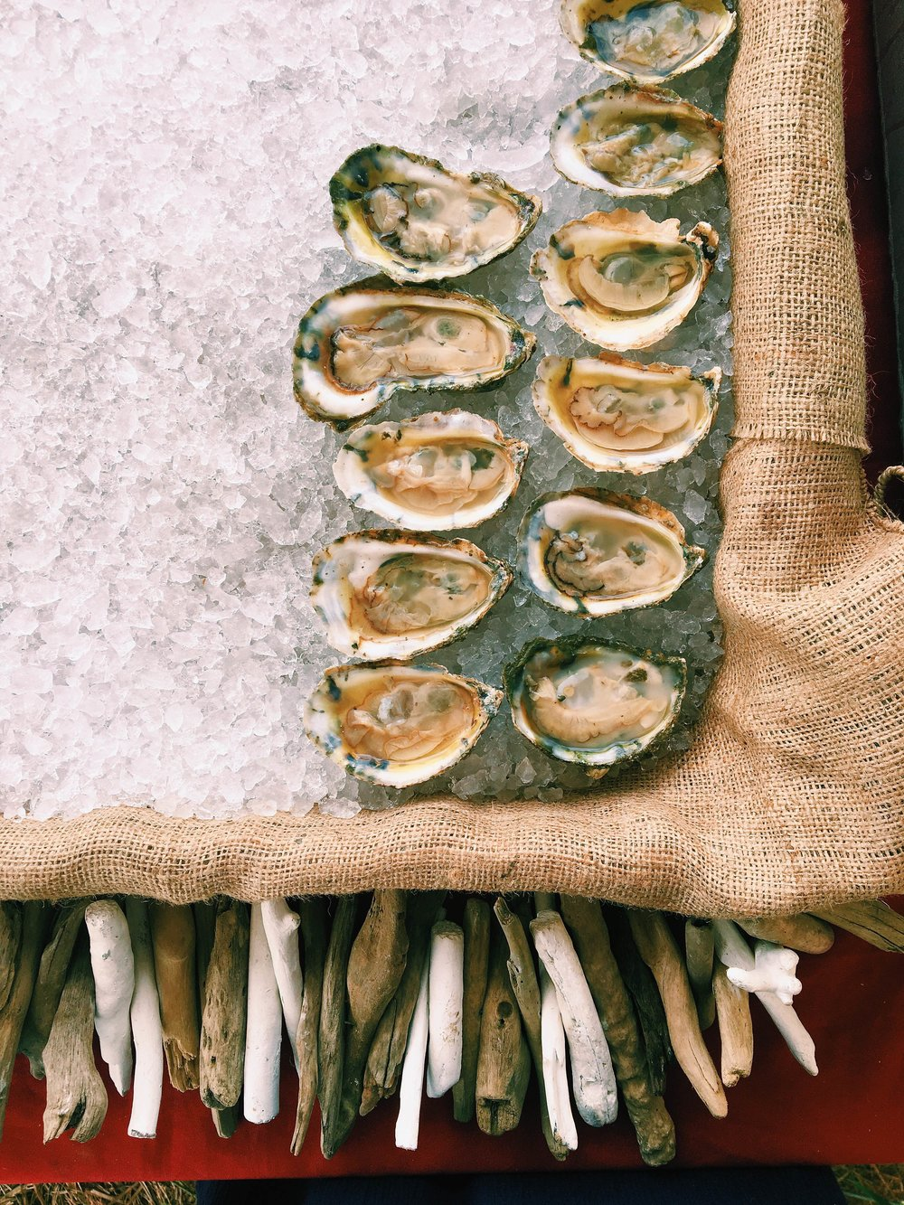 Huffington Post dabbled in the art of oyster farming. Meanwhile, we were polishing off these beauties at the Cavalier Produce open house last weekend!