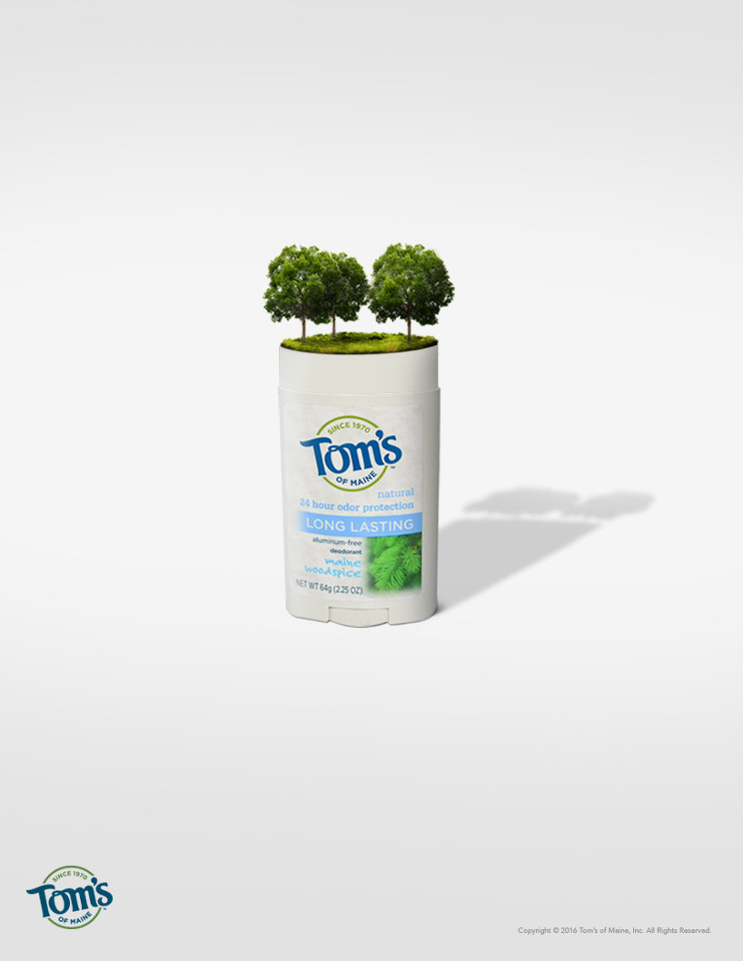 TOMS_Ad.jpg