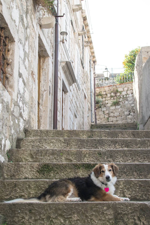 Croatia Old Town-1-25.jpg