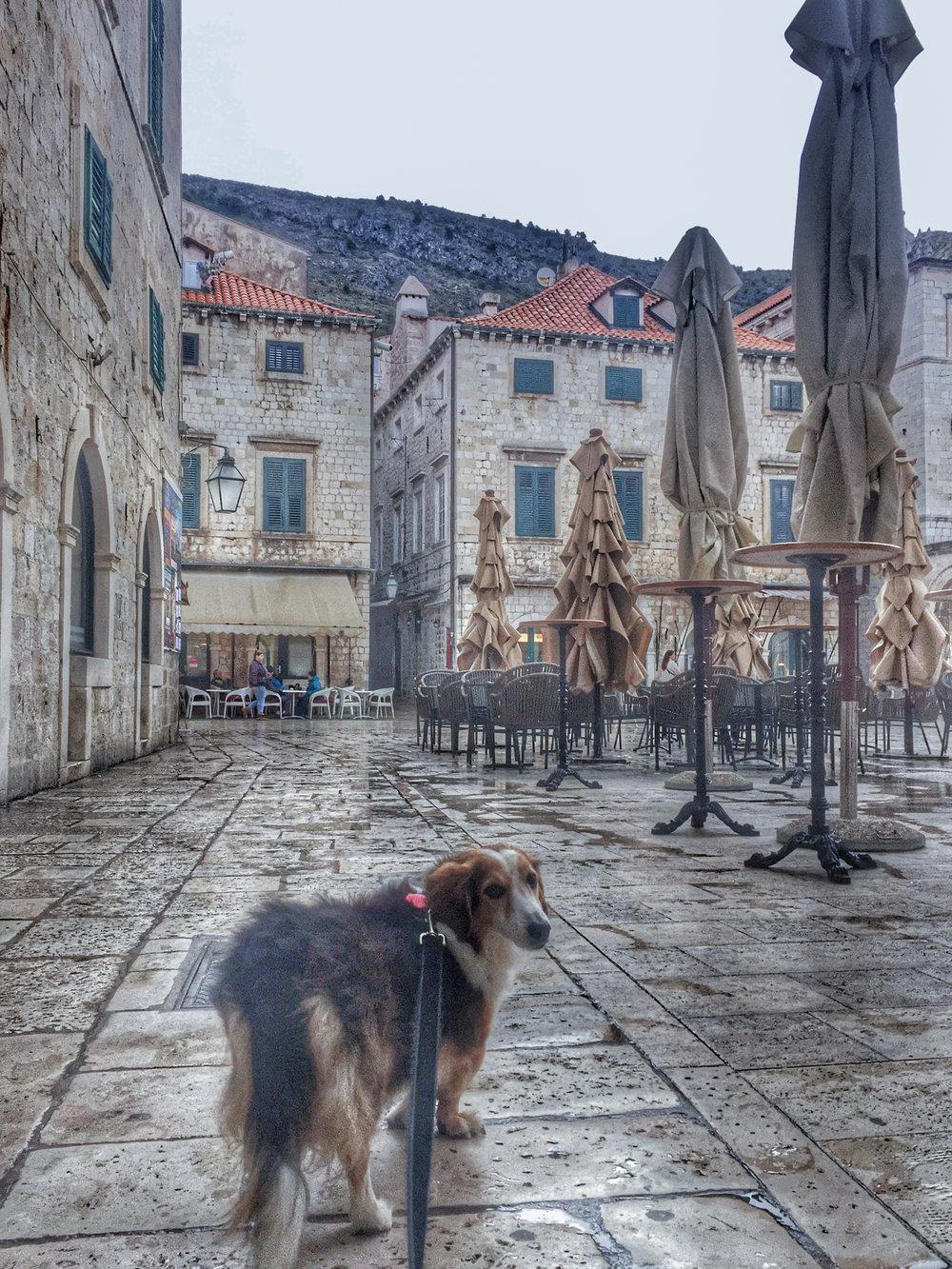 Croatia Old Town-1-31.jpg