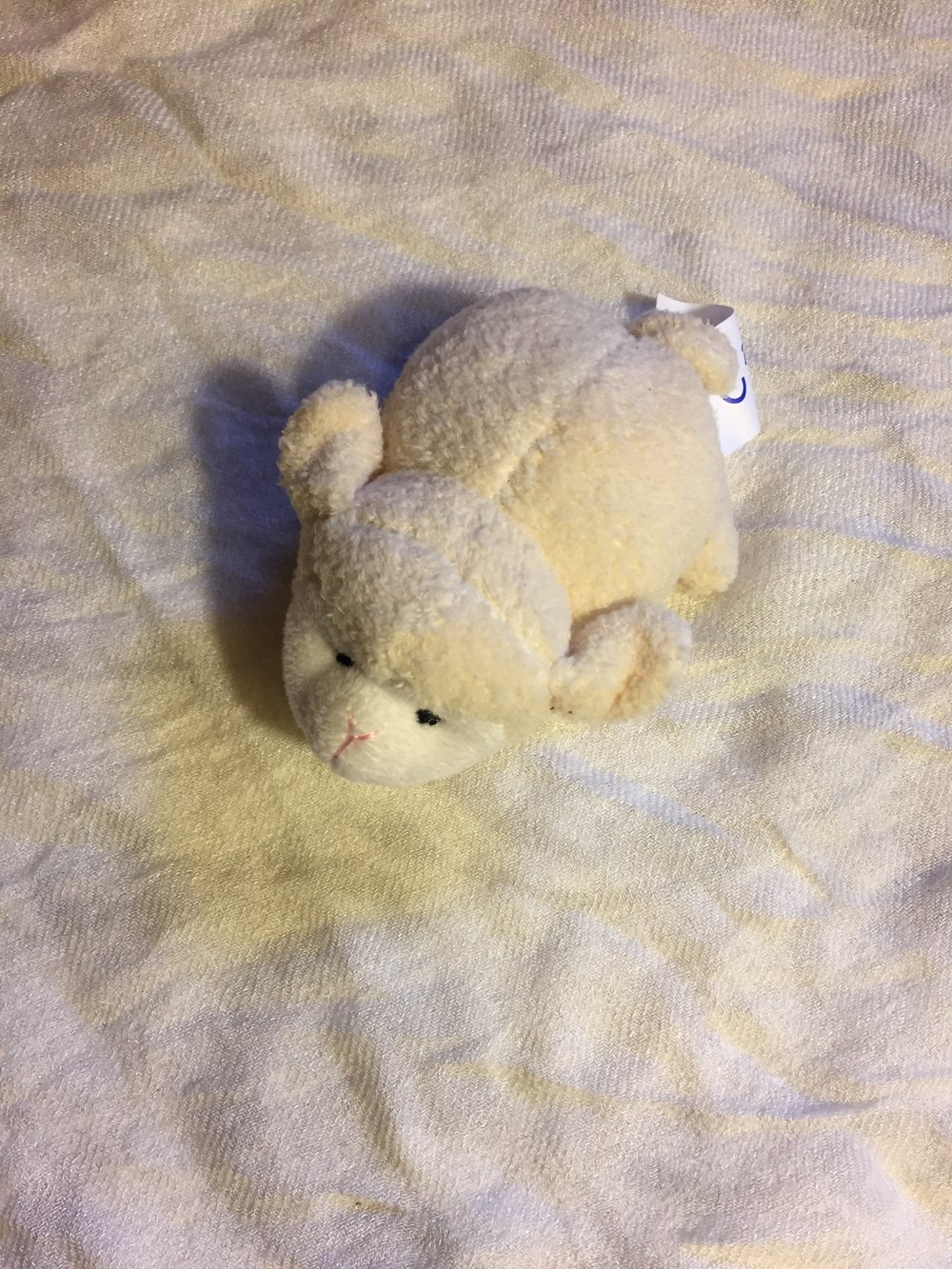 plush sheep (pulling the tail makes him wiggle!)