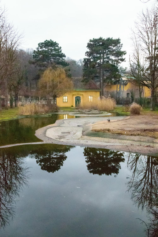 Shönbrunn_zoo-8.jpg