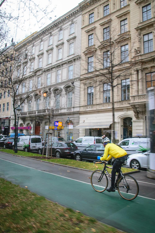 Vienna urban-3.jpg