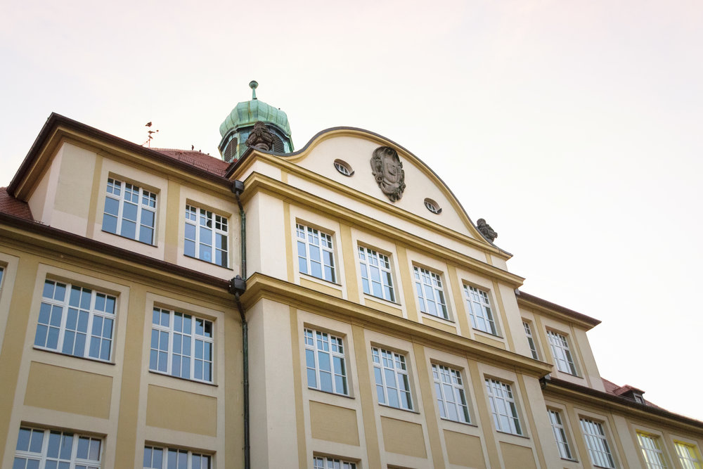 Dürer School