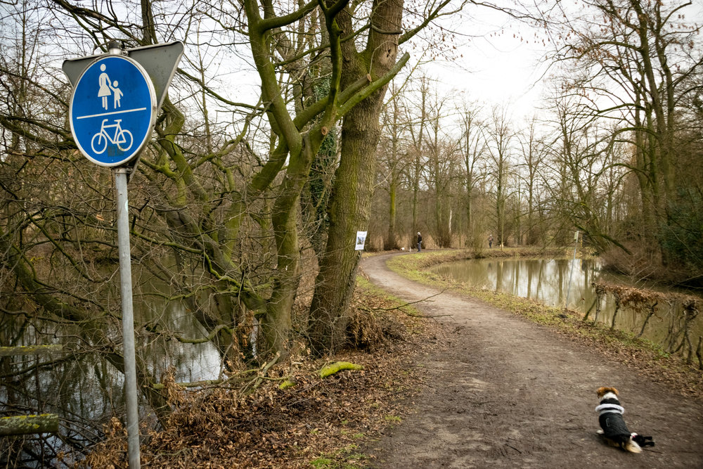 walking trail near Burg Vischering