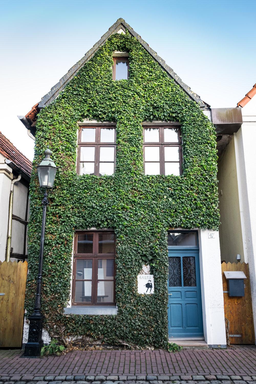 Ludinghausen-7.jpg