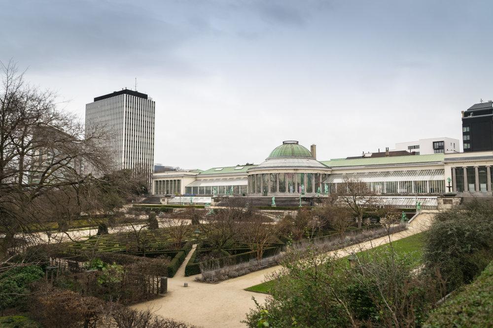 botanic garden-2.jpg