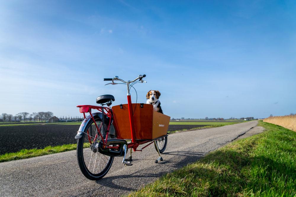 bike ride-1.jpg