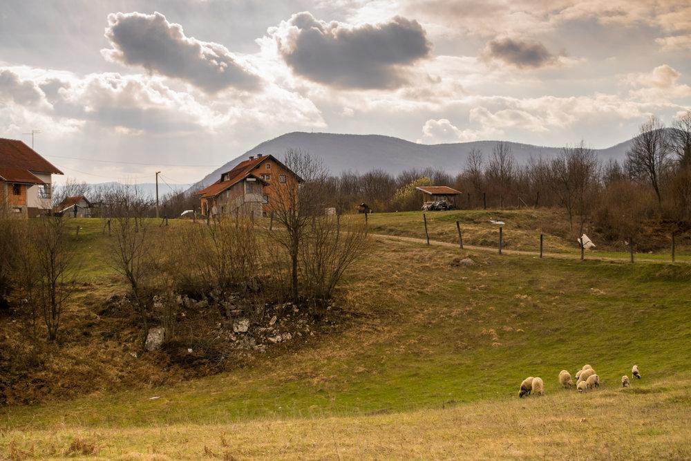 Selište Drežničko-4.jpg