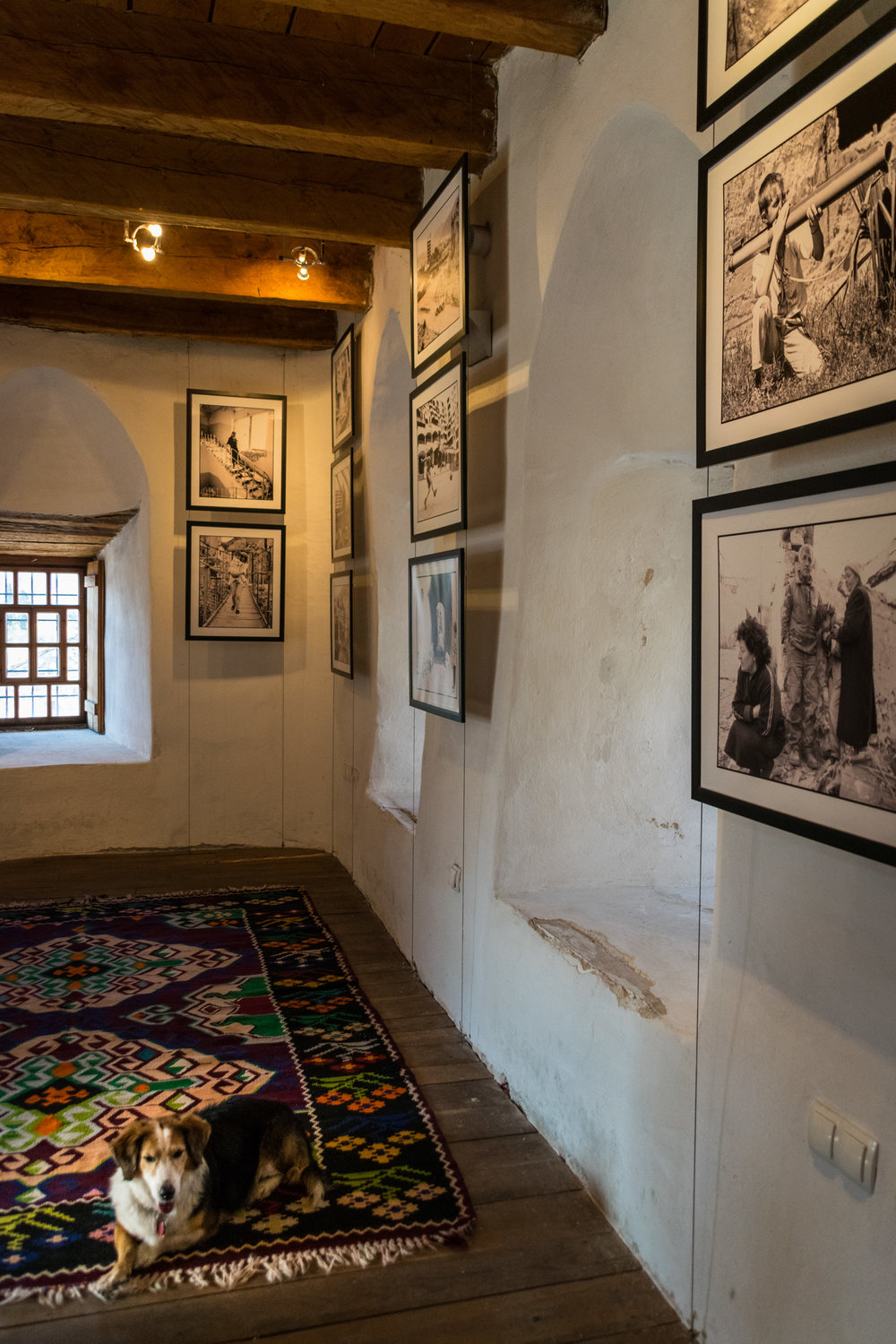 Mostar War Photo Exhibition-2.jpg