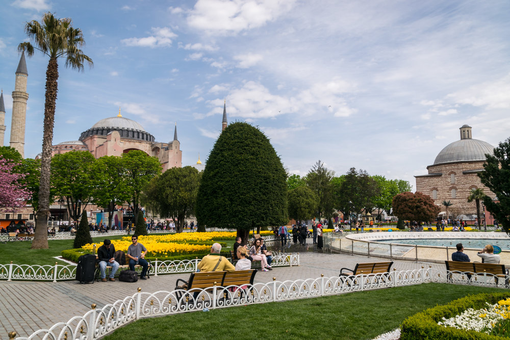 Welcome to Istanbul_flowers-3.jpg