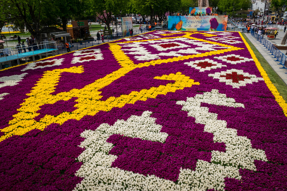 Welcome to Istanbul_flowers-2.jpg