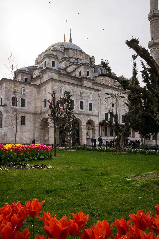 Istanbul UNESCO_Fatih Mosque-2.jpg