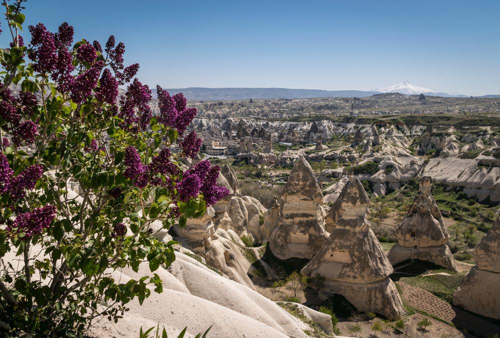 Cappadocia_Rose Valley-1.jpg