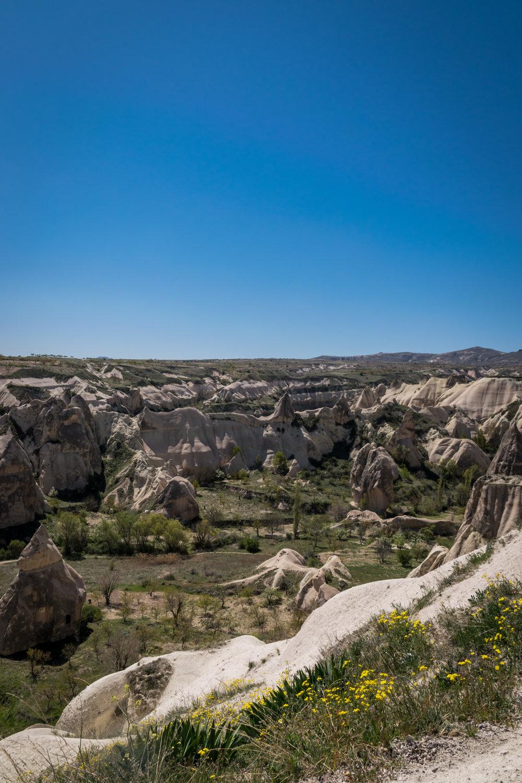 Cappadocia_Rose Valley-3.jpg