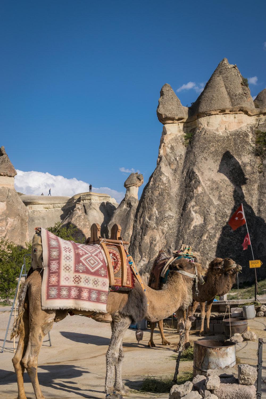 Cappadocia_Pasabag-3.jpg